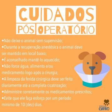 cuidados_pos_operatorio